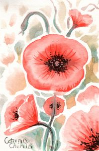 Poppy flowers, watercolor painting
