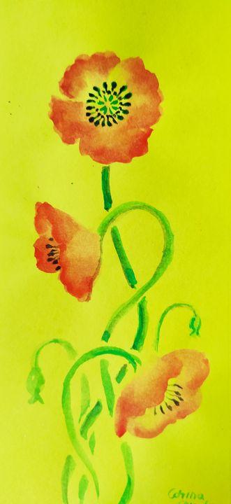 Just poppy flowers - CORinAZONe