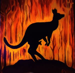 Kangaroo on fire