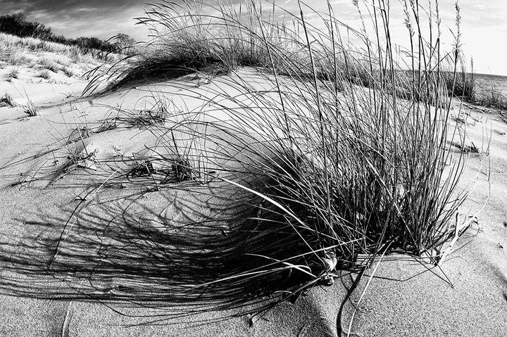 Beach Dunes - Kcable