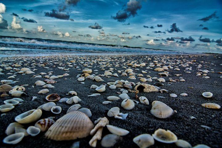 Shell Beach - Kcable