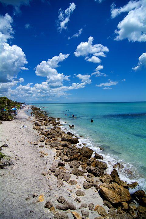 Venice Beach - Kcable