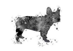 French Bulldog - Rosalia.art