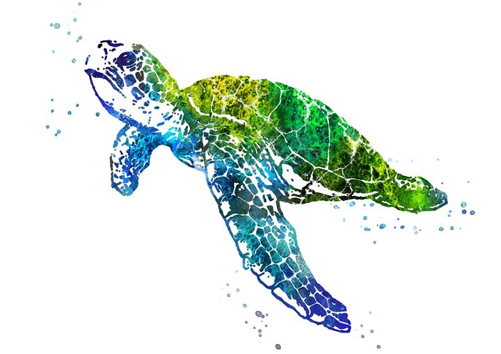 Sea turtle - Rosalia.art