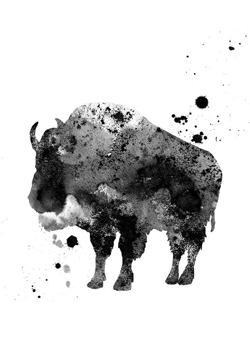 Buffalo - Rosalia.art