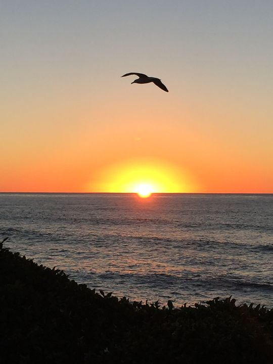 California Sunset No. 6 - Mie Otono