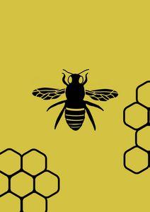 Queen bee and honeycomb
