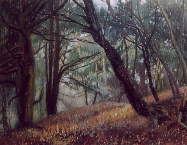 Yew Forest - Sonia Mervyn