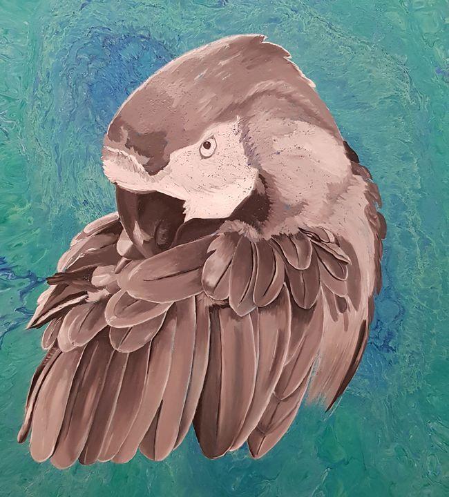 Parrot - Levit Anna