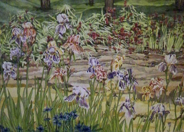 Iris garden - jilljj