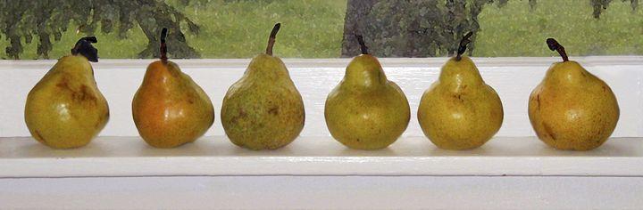Pears On Light Sill - jilljj