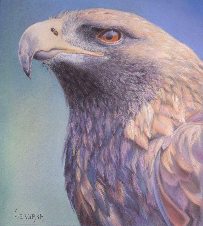 Eagle - Vergara