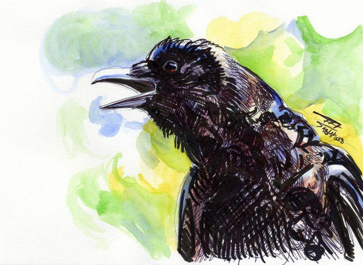 Crow - dessinateur777