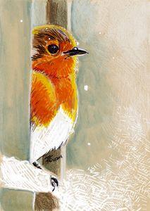 Robin n Snow