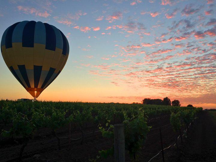 Hot Air Balloon - Ellen Jane Art