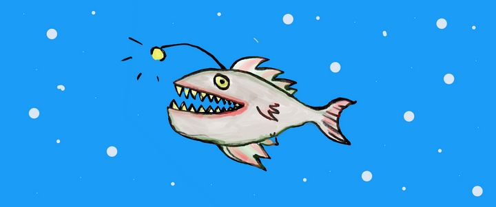 Angler fish - Evans