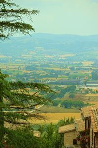Views of Tuscan Countryside