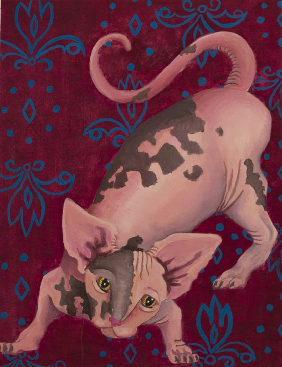 Lola's Kitty - Amanada Sabel