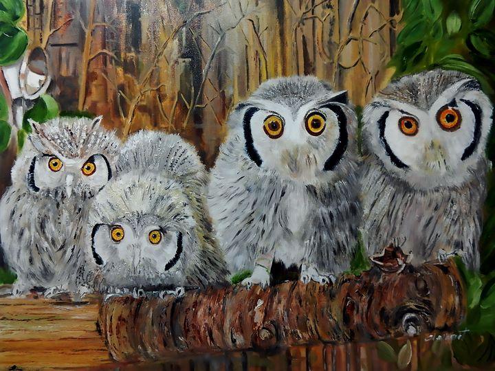 A Family of Four Snow Owls - One Studio