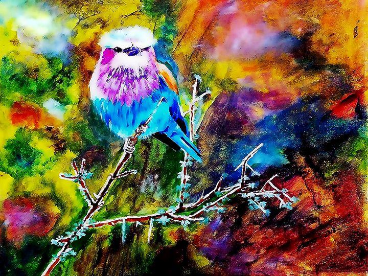 Bird - One Studio