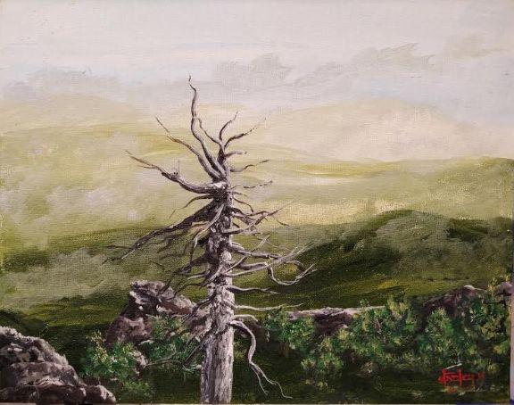 Cuyamacha Range - Southwestern Paintings by David