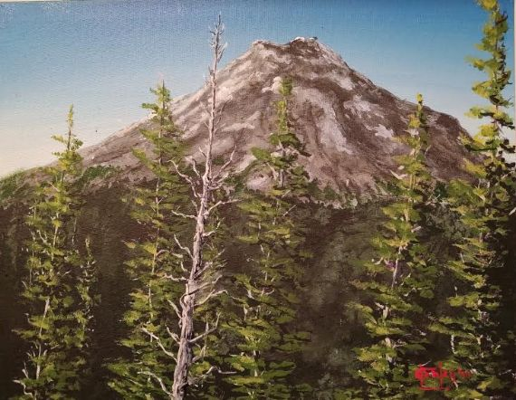 Mt. St. Helens Remembered - Southwestern Paintings by David