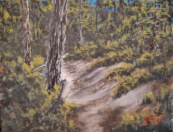 Trails and shadows, Mount Laguna, Ca - Southwestern Paintings by David