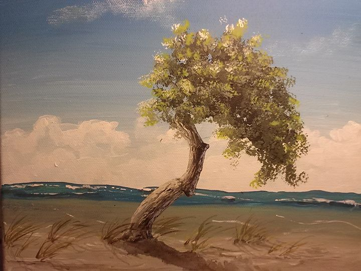Wind and Sea - Southwestern Paintings by David
