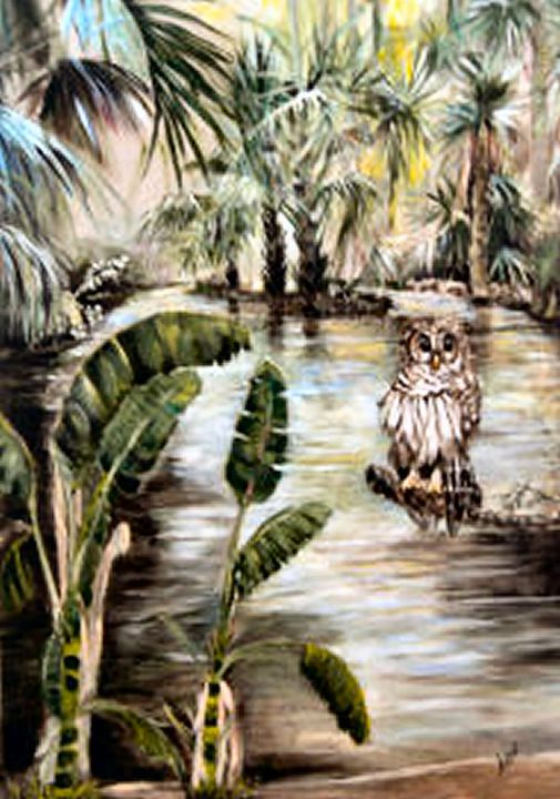 Florida's Barred owl - Arlen's Art