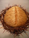 Bust of Jesus Christ