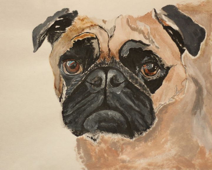 The Pouting Pug - sophie's gallery