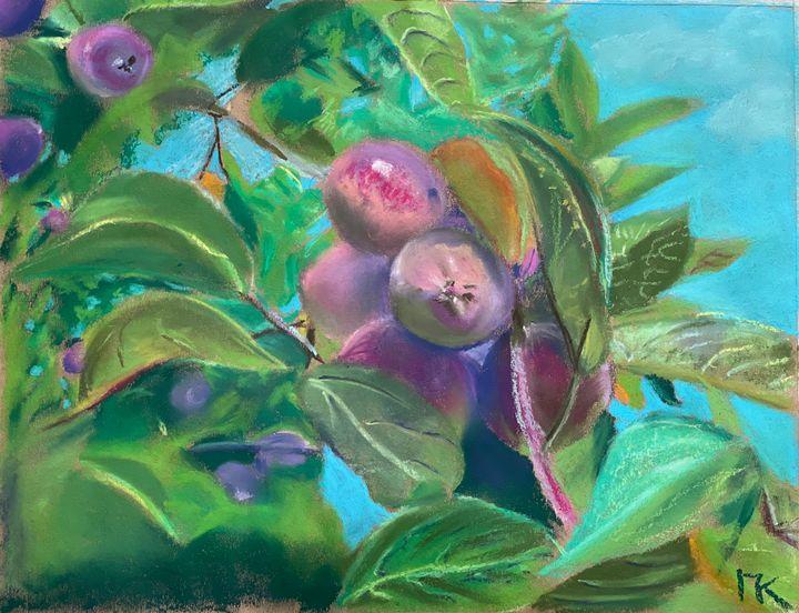 Small Chinese apples - Pavel Kuzmin