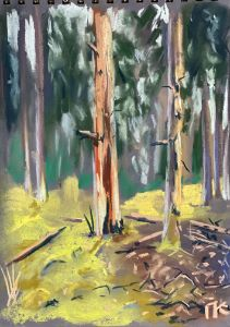 Forest, soft pastel
