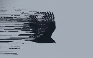 Vulture - Asthenia