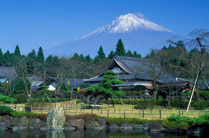 Mt. Fuji - Foto Safari