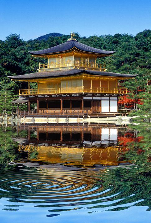 Gold Pavilion - Foto Safari