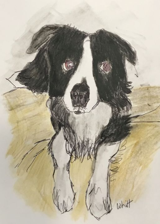 Black and White Dog - Whitt's End Art