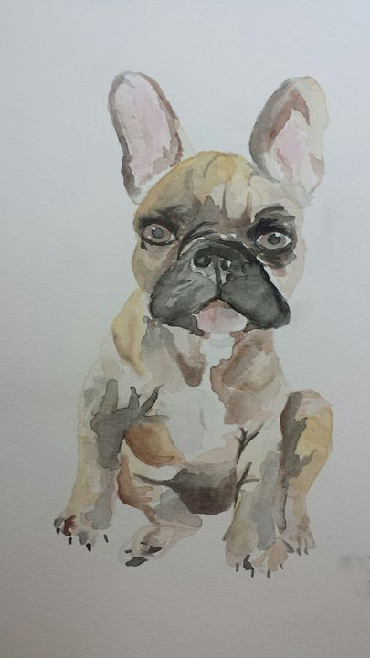 French Bulldog - Goofproofjeans