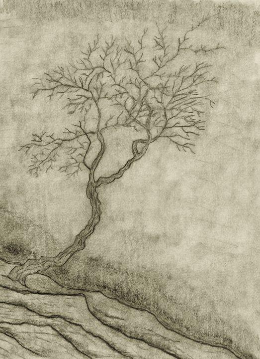 ghost tree - TSMITH
