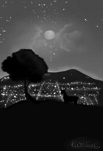A Quiet Night (B&W)