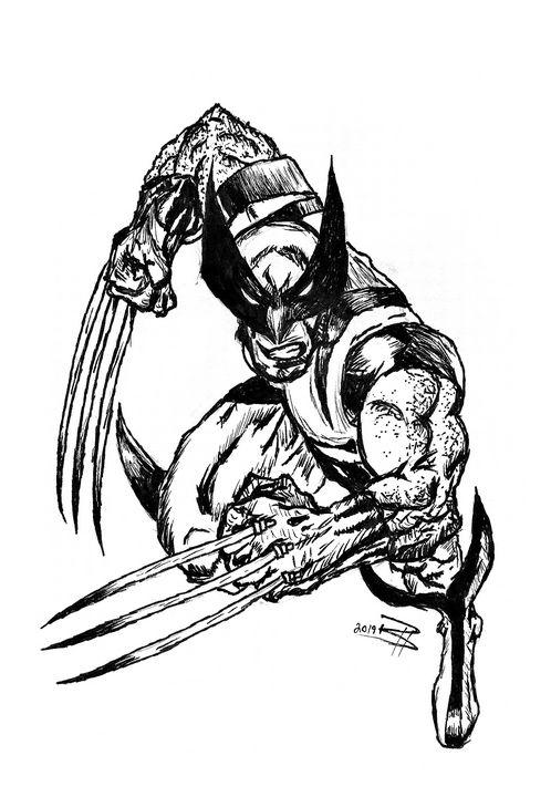 Wolverine - Brendan Herlacher's Art