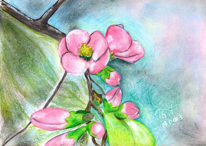 Sakura - Tracy Hayden Artist Gallery
