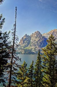 The Tetons at Jenny Lake - Nena Trapp Photography