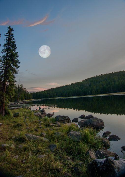Moonshine - Nena Trapp Photography