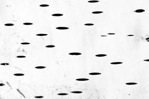 Duplicity - Cristina Velina Ion