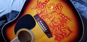 Guitar Customisation