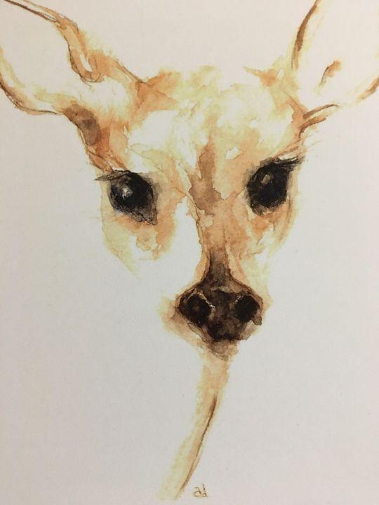 Doe Deer - Alice DiGiovanni