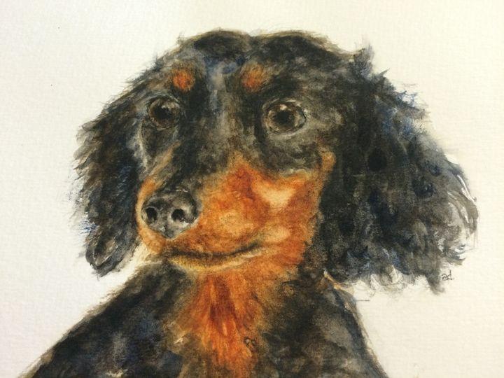 "Dachshund Portrait - ""Po"" - Alice DiGiovanni"