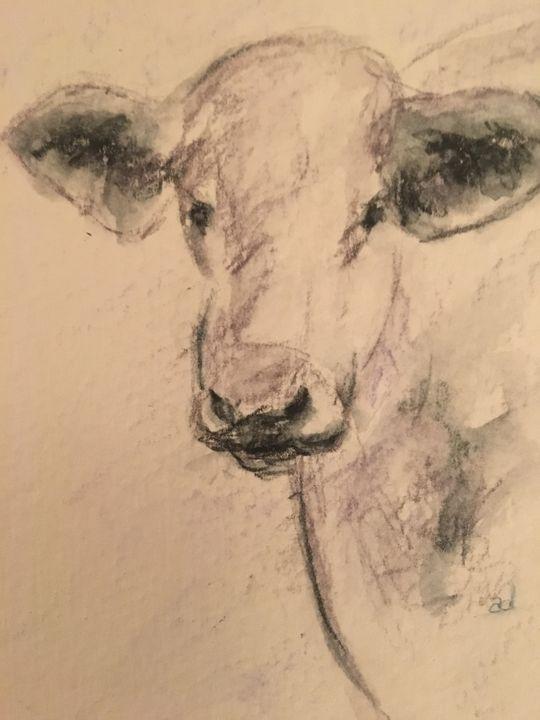 Jersey Cow - Alice DiGiovanni