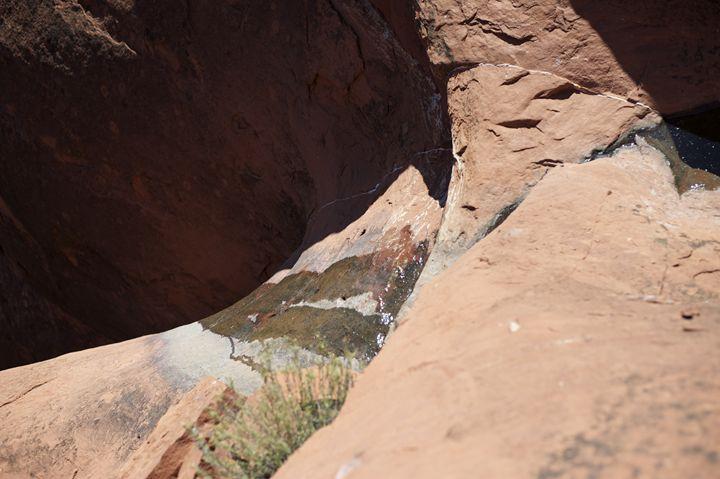 Cliffside Stream - Joshua Barlow